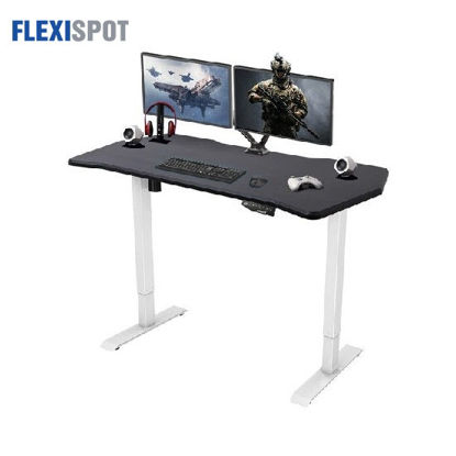 Picture of Flexispot Electric Height-Adjustable Gaming Standing Desk E1: Frame + Tabletop