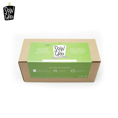 Picture of Sow & Grow Duos Kit - Sunflower (Empress) / Zinnia