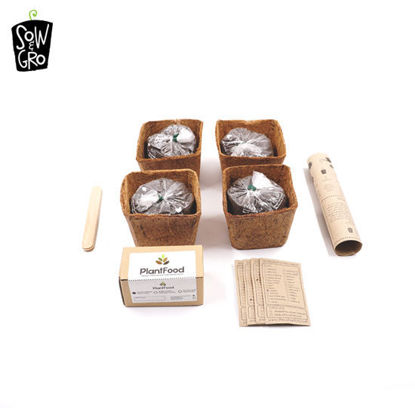 Picture of Sow & Grow Garden Kit - Pizza