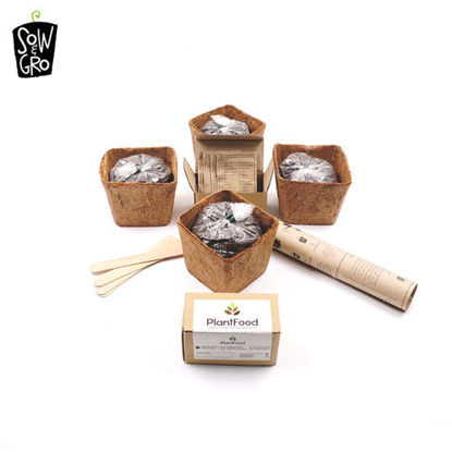 Picture of Sow & Grow Garden Kit - Flower