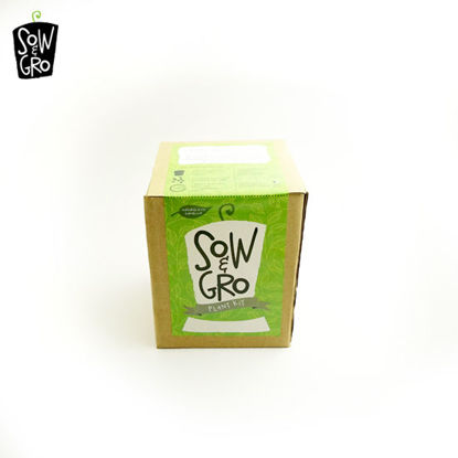 Picture of Sow & Grow Plant Kit - Basil (Sweet)