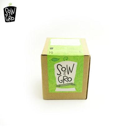 Picture of Sow & Grow Seedling Kit - Arugula (Rocket)