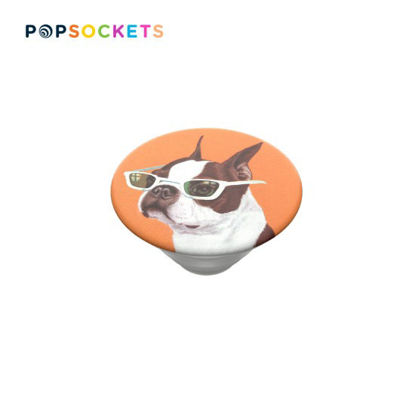 Picture of PopSockets PopTop Ginger