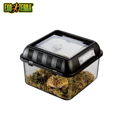 "Picture of Exo Terra Breeding Box Small 8.5""X8.5""X6.25"""
