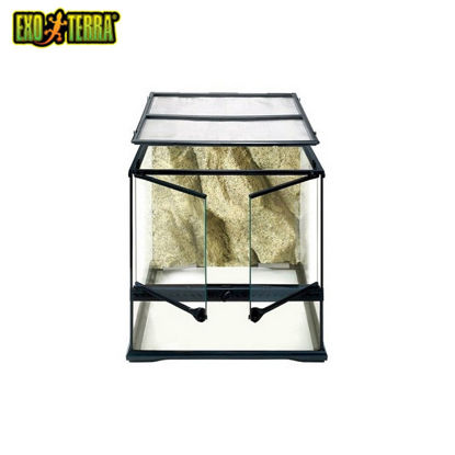 "Picture of Exo Terra All Glass Terrarium 18""X18""X18"""