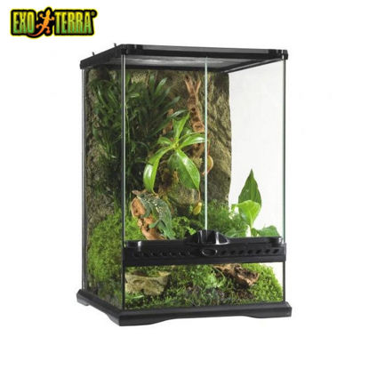 "Picture of Exo Terra All Glass Terrarium 24""X18""X24"""