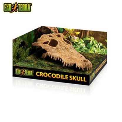 Picture of Exo Terra Crocodile Skull