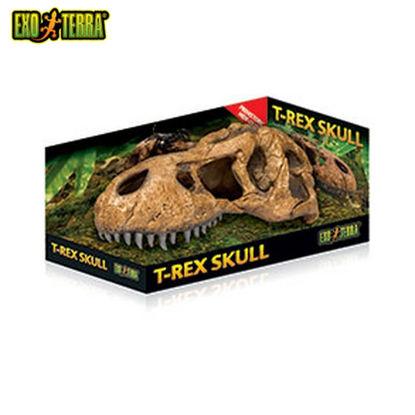 Picture of Exo Terra T-Rex Skull