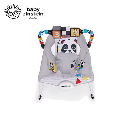 Picture of Baby Einstein More to See High Contrast Bouncer
