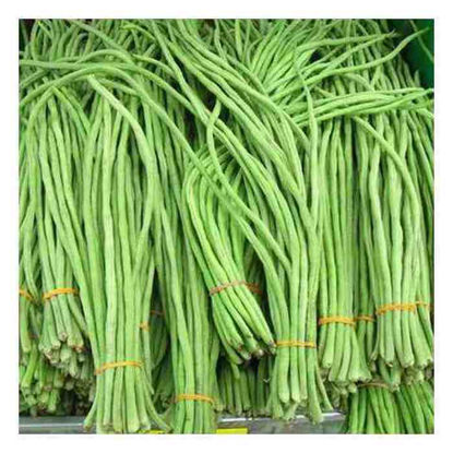 Picture of Sitaw (Yardlong bean)