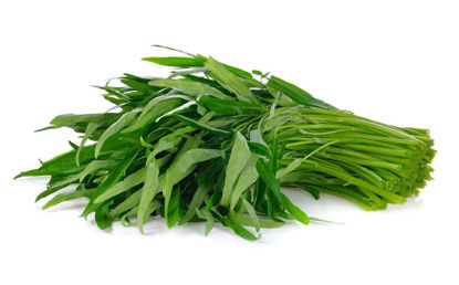 Picture of Kangkong (Water spinach)
