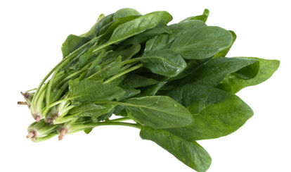 Picture of Spinach