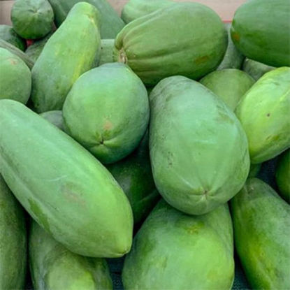 Picture of Papaya-Hilaw  (Papaya - Unripe)