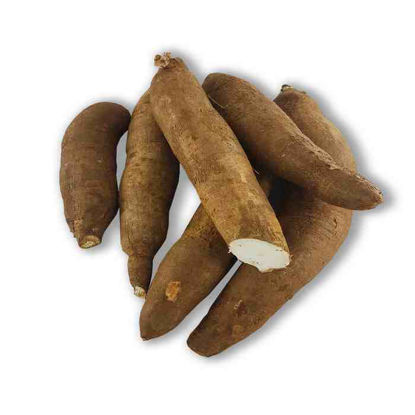 Picture of Kamoteng Kahoy  (Cassava)
