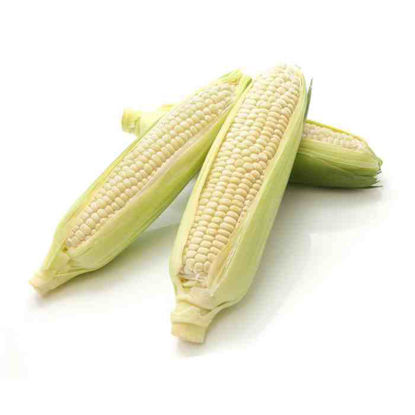 Picture of Mais-Puti (Sweet Corn - White)