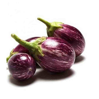 Picture of Talong na Pabilog  (Indian Eggplant)