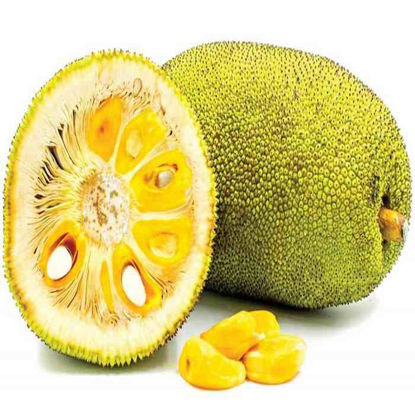 Picture of Langka- Hinog ( Jackfruit - Ripe)