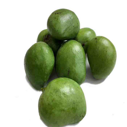 Picture of Mangga - Indian (Indian Mango)