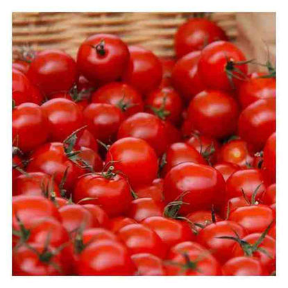 Picture of Kamatis (Cherry Tomatoes)