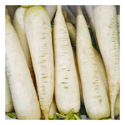 Picture of Labanos (Radish)