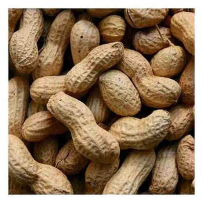 Picture of Mani (Peanuts)