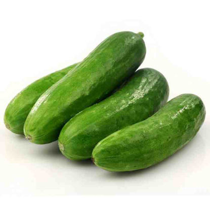 Picture of Pipino ( Cucumber)