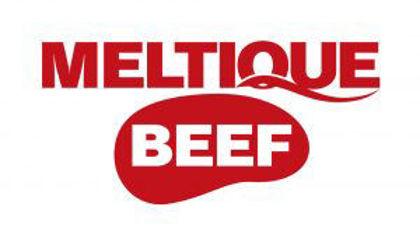Picture for manufacturer Meltique