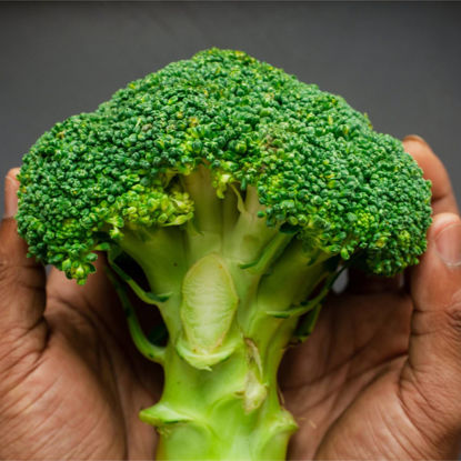 Picture of Brokuli (Broccoli)