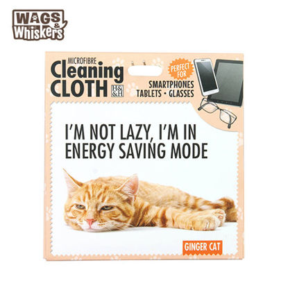 Picture of Wags & Whiskers Microfibre Cleaning Cloth - Ginger Cat