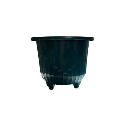 Picture of Sunny Ware Fat Round Plastic Flower/Plant Pots - XSMALL (17 cm dia x 13 cm H)