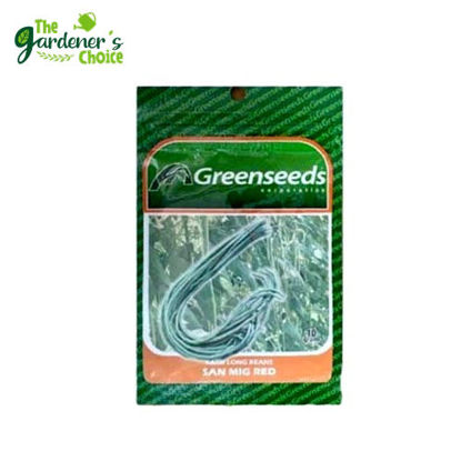 Picture of The Gardener's Choice Sitaw (Yard Long Beans) Greenseeds 10grams