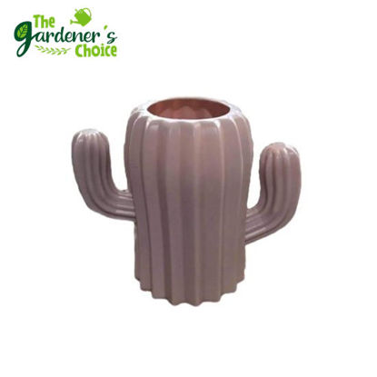 Picture of Cactus Pots Thick and Durable