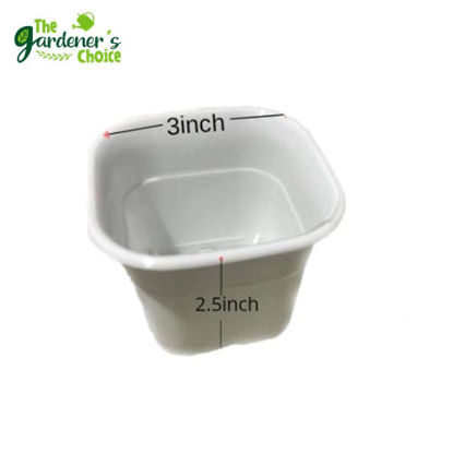 Picture of Gardening Pots Small White Square Pots CnS (10pcs)