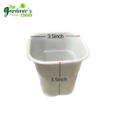 Picture of Gardening Pots Medium Tall White Square (10pcs)