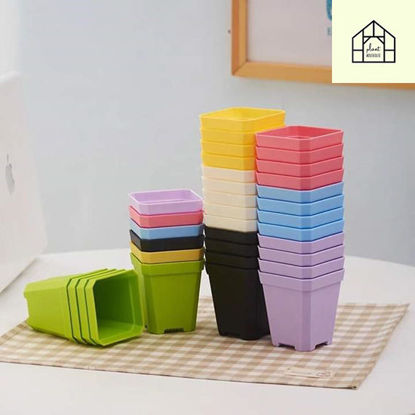 Picture of Trendy Colorful Plastic Chamfered Square Edge Succulent Pots + Tray/Plate for Succulent Plants (L 7 x W 7 x H 9) cm