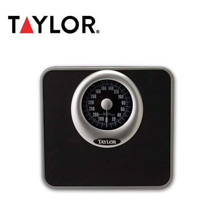 "Picture of Taylor 5"" Speedometer Dial Scale 4832"