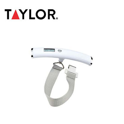 Picture of Taylor Luggage Scale 8123-4