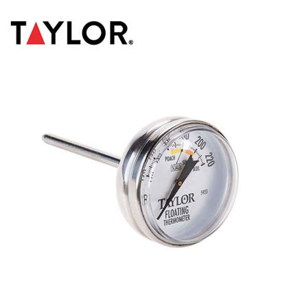 Picture of Taylor Floating Thermometer 5933