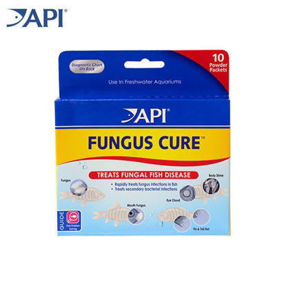 Picture of 16P API Fungus Cure 10's