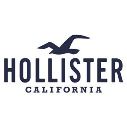 Picture for manufacturer Hollister