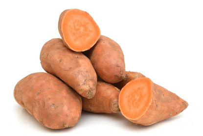Picture of Kamote (Sweet Potatoes) - Orange