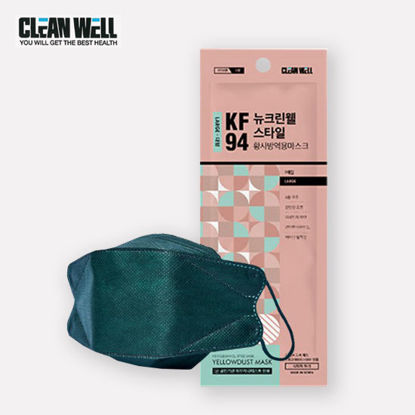 Picture of 5 Piece Cleanwell Green KF94 Respiratory Nano Mask