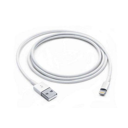 Picture of Apple Lightning to USB cable (1m)
