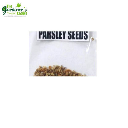 Picture of The Gardener's Choice Parsley Seeds