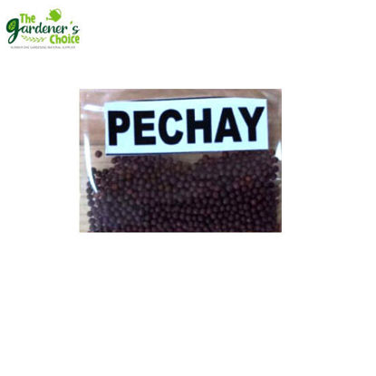 Picture of The Gardener's Choice Pechay Seeds