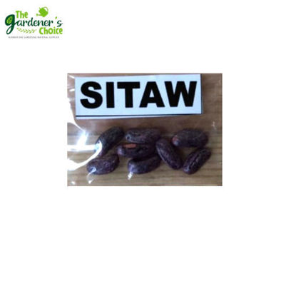 Picture of The Gardener's Choice Sitaw Seeds