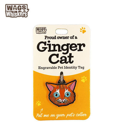 Picture of Wags & Whiskers Pet ID Tag - Ginger Cat