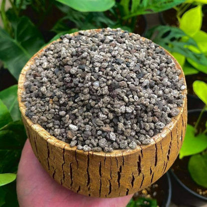 Picture of The Gardener's Choice Pumice Matang Hito Size (1kg)