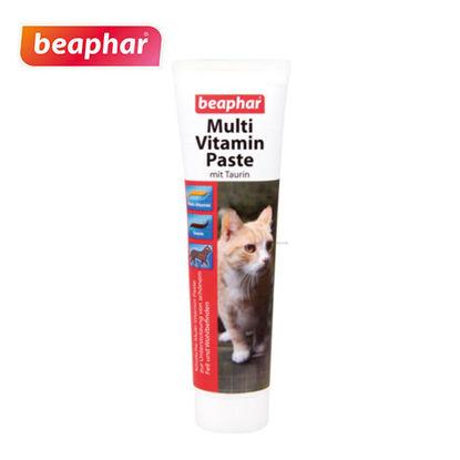 Picture of Beaphar MultiVitamin Paste Cat 100g