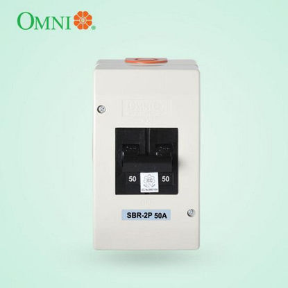 Picture of Omni Safety Breaker Regular 2 Poles 50A